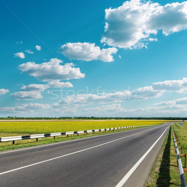 Asfalt drogowego mętny niebo niebieski prędkości Zdjęcia stock © mycola
