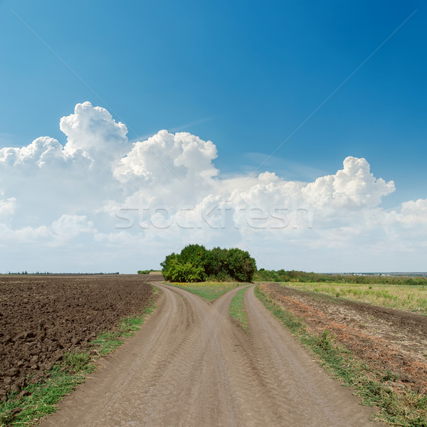 two rural roads to horizon and clouds in blue sky Stock photo © mycola