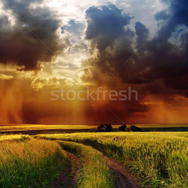 Dramático nublado céu estrada verde campo Foto stock © mycola