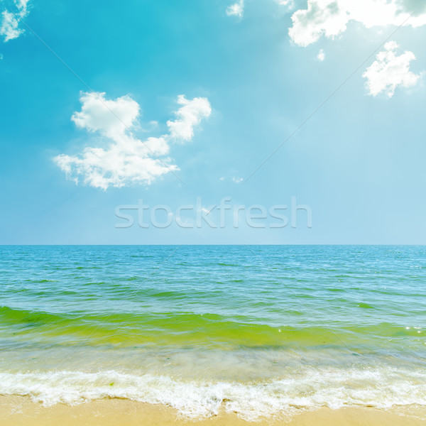 blue sky with clouds and sun over sea Stock photo © mycola