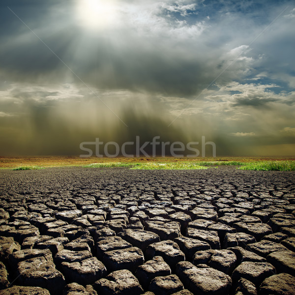 dramatic sky with sun over drought earth Stock photo © mycola