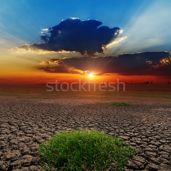 dramatic sunset over barren earth Stock photo © mycola