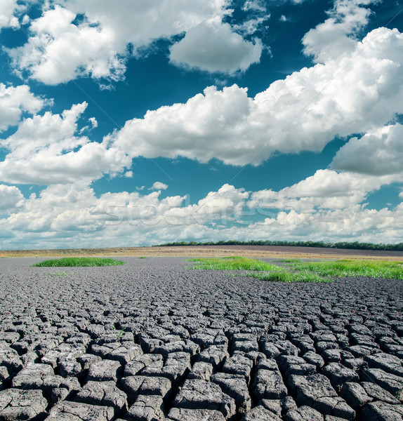 Drámai égbolt repedt Föld textúra nap Stock fotó © mycola