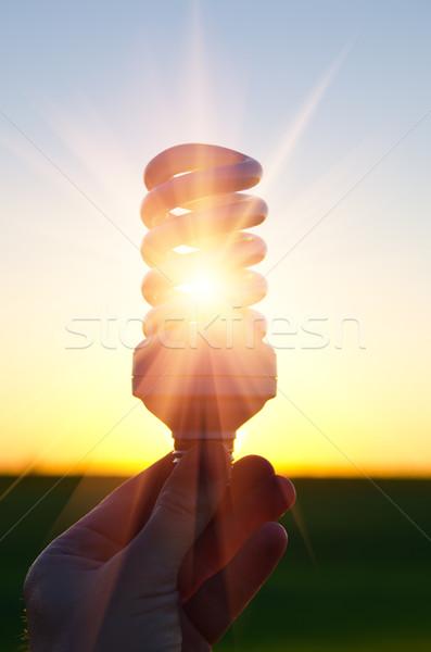 Energia lâmpada pôr do sol negócio Foto stock © mycola
