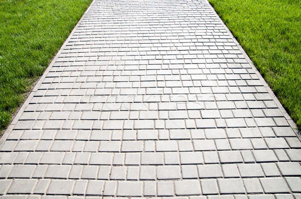 sidewalk between green grass Stock photo © mycola