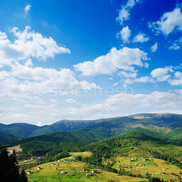 Carpathian mountains in summer Stock photo © mycola