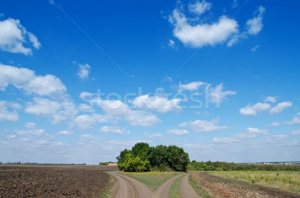 Twee wegen diep Blauw sluw landschap Stockfoto © mycola