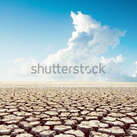 land with dry cracked ground under blue sky Stock photo © mycola