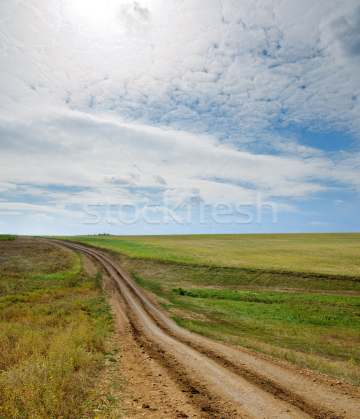 rural road to horizon Stock photo © mycola