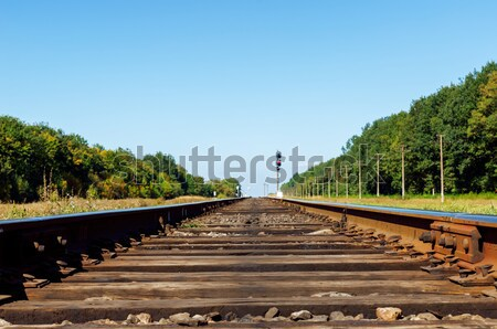 one cloud over railroad to horizon Stock photo © mycola
