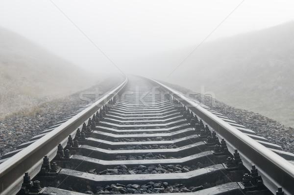 railroad in fog Stock photo © mycola