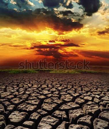 Dramático pôr do sol seca terra céu textura Foto stock © mycola