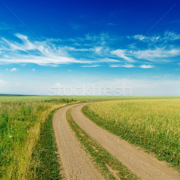 Rural route horizon nuageux ciel herbe Photo stock © mycola