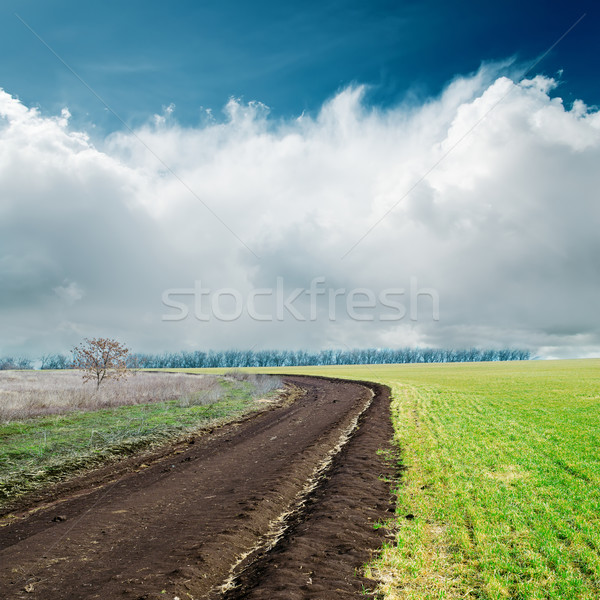 spring dirty road in green fields and clouds over it Stock photo © mycola