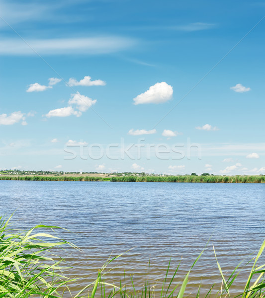 Stock photo: river with green coast and clouds in blue sky