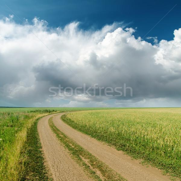 Koszos út mezők alacsony felhők horizont Stock fotó © mycola