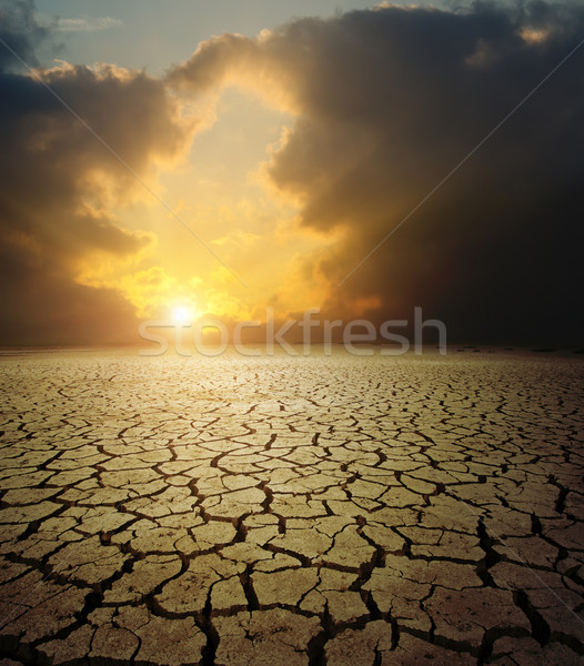 sunset over barren land Stock photo © mycola