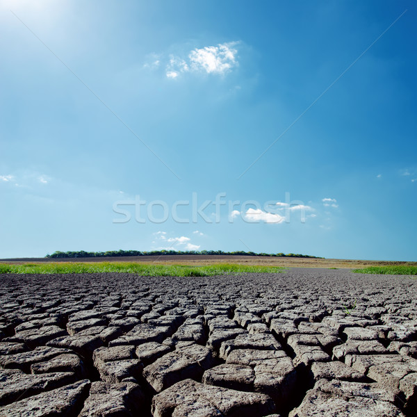 hot sunlight in blue sky over drought earth Stock photo © mycola