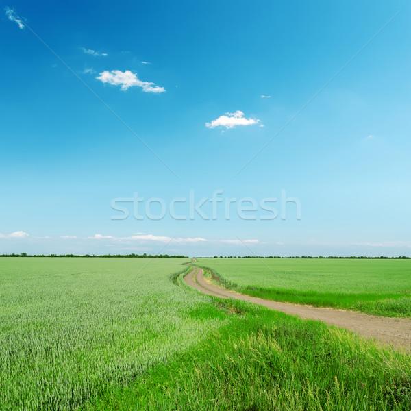 road in green field under blue sky Stock photo © mycola