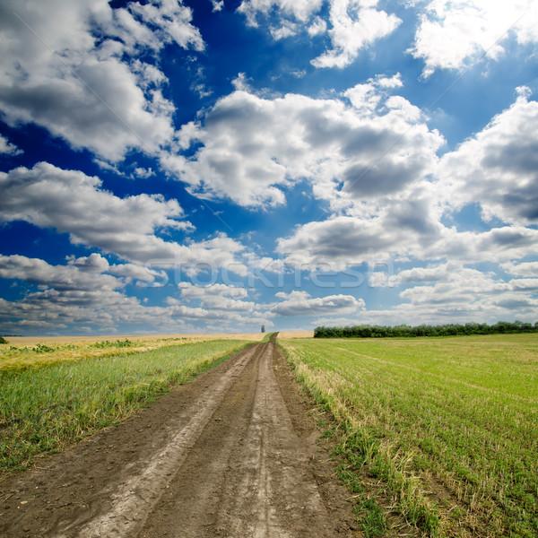 Rural estrada dramático céu grama paisagem Foto stock © mycola
