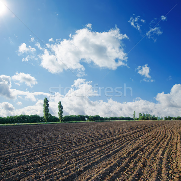 black ploughed field under blue sky with sun Stock photo © mycola