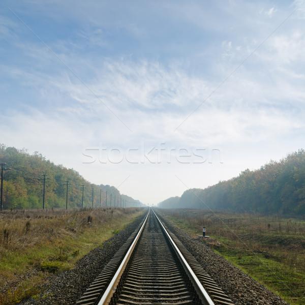 железная дорога горизонте тумана дороги аннотация пейзаж Сток-фото © mycola