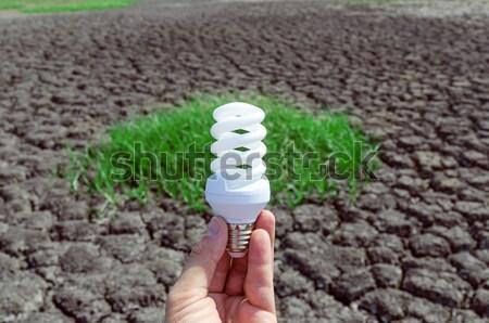 light bulb over drought land Stock photo © mycola