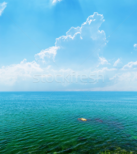 beautiful seascape, cloudy sky and sea Stock photo © mycola