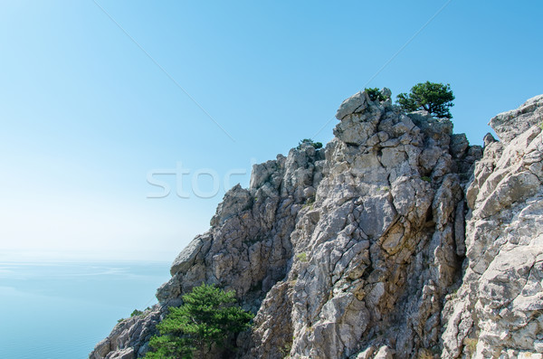 blue sky over sea and cliff Stock photo © mycola