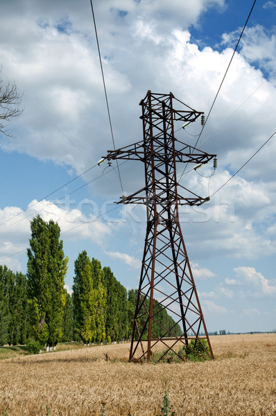 power transmission tower on field Stock photo © mycola