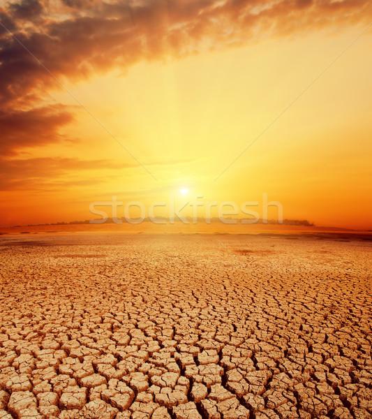 Forró narancs naplemente sivatag tájkép háttér Stock fotó © mycola