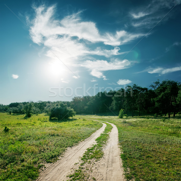 Sol nuvens estrada madeira floresta paisagem Foto stock © mycola