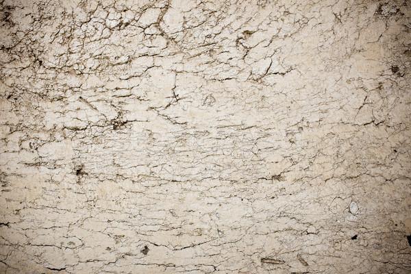 Grunge duvar doku Stok fotoğraf © myfh88
