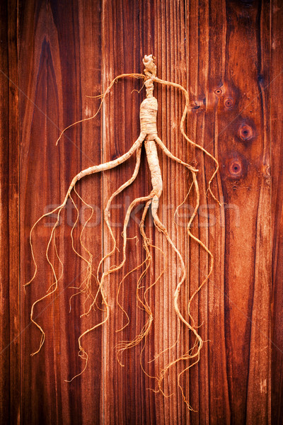 Dry ginseng on a wood background Stock photo © myfh88