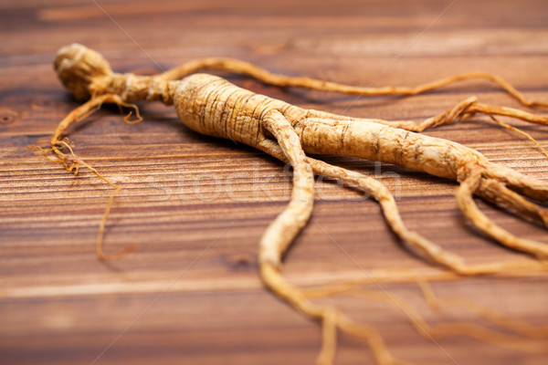 высушите женьшень древесины продовольствие медицинской здоровья Сток-фото © myfh88