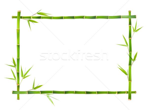 Bambusz keret izolált fa levél növény Stock fotó © myfh88