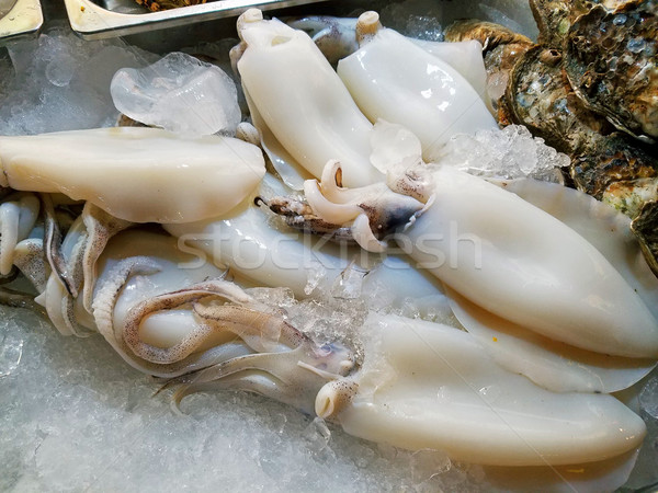Fresh squid and seafood in market Stock photo © myfh88
