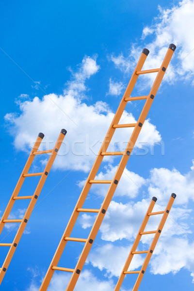 Ladder to success Stock photo © myfh88