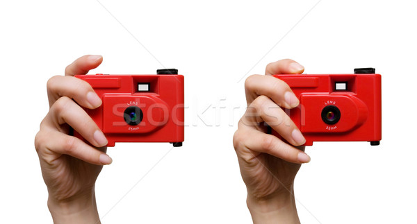 Camera in a hand Stock photo © myfh88