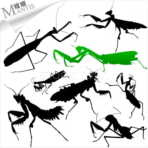 насекомые природы фон зеленый Сток-фото © myfh88