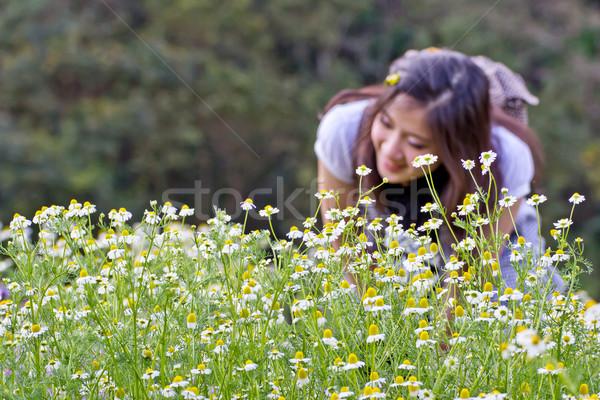 çiçekler bahçe çiçek bahar yaz Stok fotoğraf © myimagine
