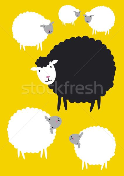 Siyah koyun kavramlar Stok fotoğraf © myimagine
