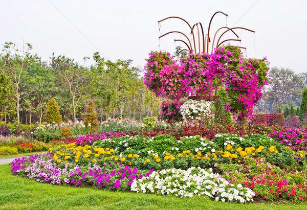 çiçek bahar doğa bahçe yaz Stok fotoğraf © myimagine