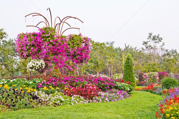 Jardin de fleurs fleur printemps nature jardin été Photo stock © myimagine