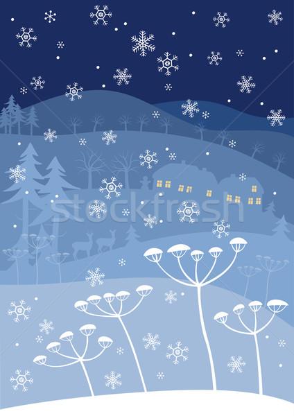 Blue winter Stock photo © MyosotisRock