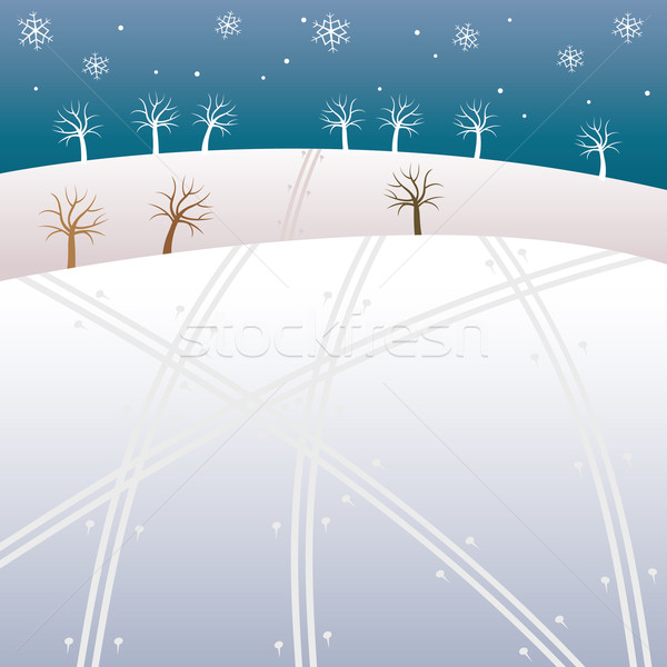 Tél ház hó mező fehér karácsony Stock fotó © MyosotisRock