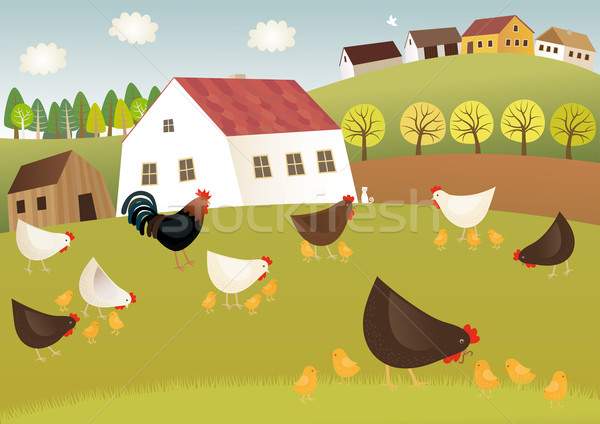 Stock photo: Fowls farm