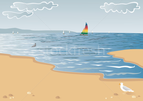 Zee boot scène strand meeuwen boten Stockfoto © MyosotisRock