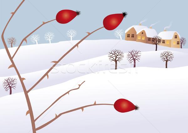 Inverno humor rosa quadril árvore Foto stock © MyosotisRock