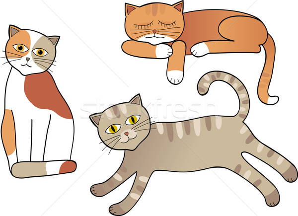 Stock photo: Set of cats isolated